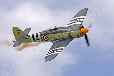 WB - Hawker Sea Fury 00056 Hawker Sea Fury British Royal Navy Korean War era fighter warbird by Peter J Mancus
