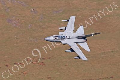 Panavia Tornado 00256 Panavia Tornado British RAF by Alasdair MacPhail