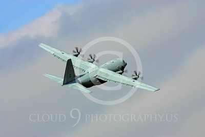 C-130Forg 00080 Lockheed C-130 Hercules British RAF by Paul Ridgway