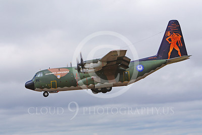 C-130Forg 00100 Lockheed C-130 Hercules Hellenic Air Force by Peter J Mancus