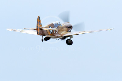 WB - Curtiss P-40 00068 A sharkmouth flying Curtiss P-40 Warhawk American WWII era fighter retracts its landing gear, by Peter J Mancus