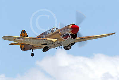 WB - Curtiss P-40 00064 A sharkmouth Curtiss P-40 Warhawk American WWII era fighter retracts its landing gear, by Peter J Mancus
