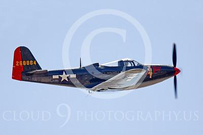 WB - P-63 00016 Bell P-63 Kingcobra Pretty Polly by Peter J Mancus
