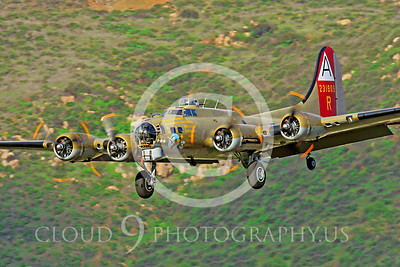 WB - B-17 00088 Boeing B-17G Flying Fortress Nine O Nine by Peter J Mancus