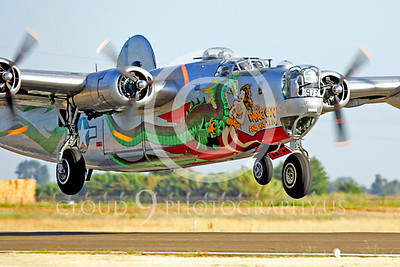 WB - Consolidated B-24 Liberator 00030 Consolidated B-24 Liberator US Army Air Force The Dragon warbird markings by Peter J Mancus