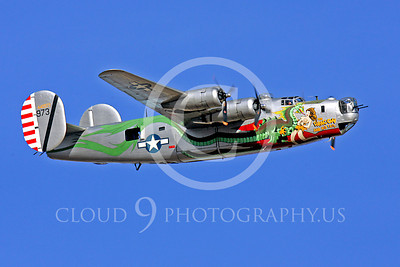 WB - Consolidated B-24 Liberator 00034 Consolidated B-24 Liberator US Army Air Force The Dragon warbird markings by Peter J Mancus