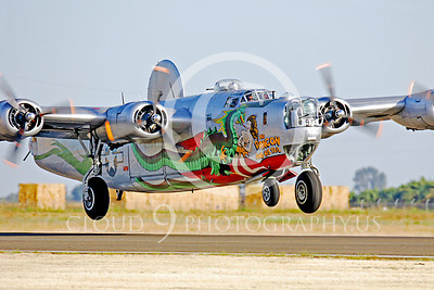 WB - Consolidated B-24 Liberator 00036 Consolidated B-24 Liberator US Army Air Force The Dragon warbird markings by Peter J Mancus