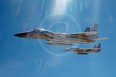 F-15USAF 00322 Two USAF McDonnell Douglas F-15 Eagle jet fighters, by Peter J Mancus