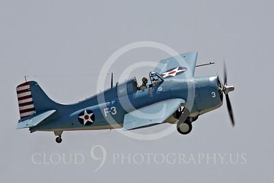 WB - Grumman F4F Wildcat 00020 Grumman F4F Wildcat US Navy warbird markings by Peter J Mancus