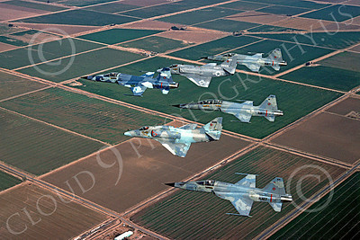 F-5USN 00010 Northrop F-5E Freedom Fighter US Navy TOPGUN by Lenny Bucko