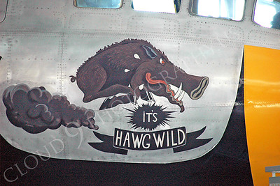 NA 00011 It's Hawg Wild on Boeing B-29 Super Fortress by Alasdair MacPhail