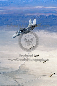 VF-51 Striking Eagle Grumman F-14A Tomcat dropping Mk -84 bombs in the desert. 1994 CDR Tom Twomey