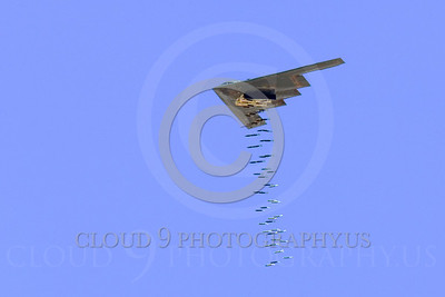 OR 00007 A USAF Northrop B-2 Spirit bomber drops a load of conventional bombs, by Peter J Mancus