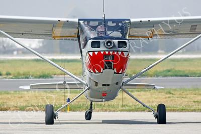 SM 00105 Cessna 0-1 Bird Dog WARBIRD by Peter J Mancus