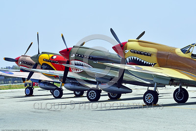 SM-P-40 004 A line up of static various color schemes sharkmouth Curtiss P-40 Warhawks American World War II era fighter warbirds at Chino Planes of Fame 2016 airshow warbird picture by Peter J  Mancus tif