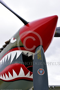 SM-P-40 009 A static olive drab color scheme sharkmouth Curtiss P-40 Warhawk American World War II era fighter warbird at Chino Planes of Fame 2016 airshow warbird picture by Peter J  Mancus tif