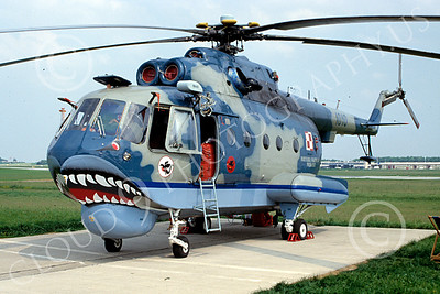 Mi-14 00005 A static SHARKMOUTH Mil Mi-14 Haze Polish Air Force helicopter picture by Raymond Bosselaar
