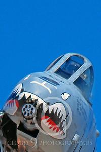 SM 00026 Fairchild A-10 Thunderbolt II Warthog USAF by Peter J Mancus
