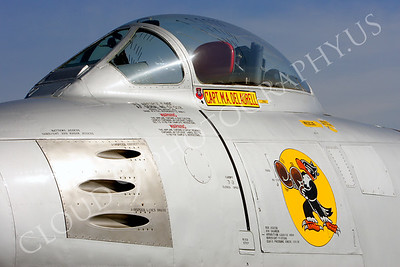 SWCI 00005 Boxing Buzzard on USAF F-86F Sabre by Peter J Mancus