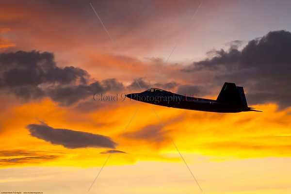 USAF F-22 Raptor Silhouette Pictures