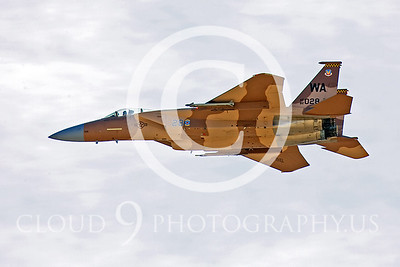 AGGR 00022 McDonnell Douglas F-15 Eagle USAF by Peter J Mancus