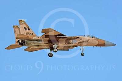 AGGR 00036 McDonnell Douglas F-15 Eagle US Air Force by Peter J Mancus
