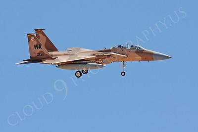 AGGR 00100 McDonnell Douglas F-15 Eagle USAF 85131 Aggressor CRASHED by Carl E Porter