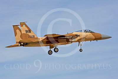 AGGR 00020 McDonnell Douglas F-15 Eagle by Peter J Mancus