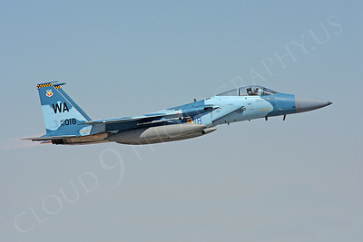 AGGR 00038 McDonnell Douglas F-15 Eagle Aggressor by Carl E Porter