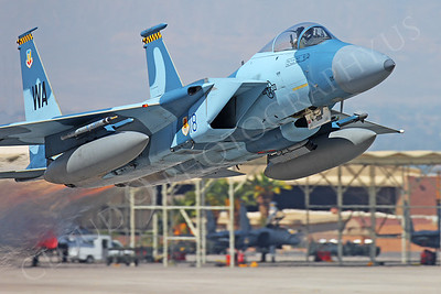 AGGR 00050 McDonnell Douglas F-15 Eagle USAF Nellis AFB by Peter J Mancus