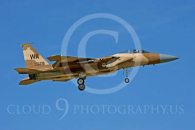 AGGR 00018 McDonnell Douglas F-15 Eagle USAF by Peter J Mancus