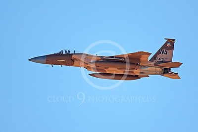 AGGR 00118 McDonnell Douglas F-15 Eagle USAF 820028 by Peter J Mancus