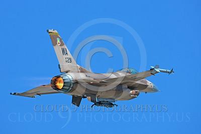 AB-F-16USAF 00100 Lockheed Martin F-16 USAF 86291 Aggressor by Peter J Mancus