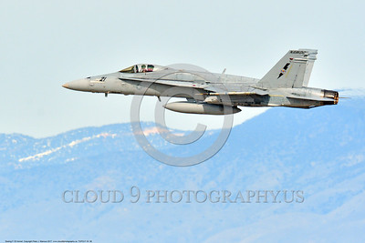 TOPG-F-18 0008 A low viz gray color scheme McDonnell Douglas F-18 Hornet USN jet figher 164030 TOP GUN NAWDC climbs out after take off at NAS Fallon 3-2017 military airplane picture by Peter J  Mancus