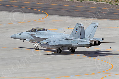 TOPG 00201 Boeing F-18F Super Hornet US Navy TOP GUN Naval Strike Air Warfare Center NSAWC NAS Fallon June 2010, by Peter J Mancus