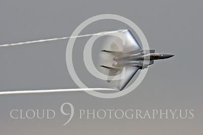 VORTEX-F-15USAF 00002 McDonnell Douglas F-15E Strike Eagle USAF by Peter J Mancus