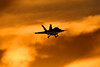****** | Boeing F/A-18F Super Hornet | United States Navy