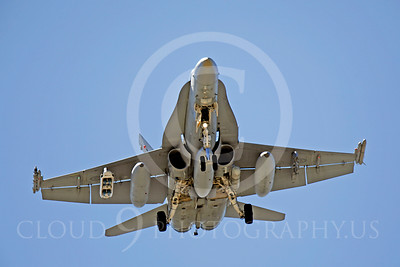 F-18Forg 00082 McDonnell Douglas F-18C Hornet Royal Austrailian Air Force by Peter J Mancus