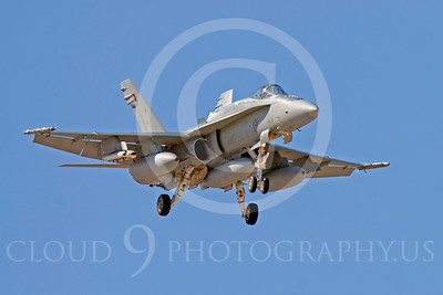 F-18Forg 00046 McDonnell Douglas F-18A Hornet Royal Australian Air Force by Peter J Mancus