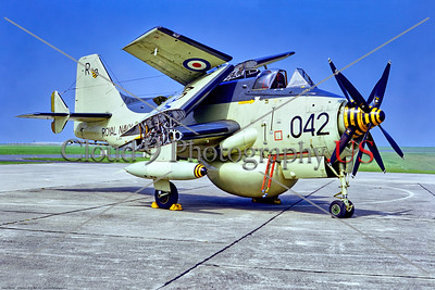 Gannet 005 A static, wings folded, Fairey Gannet, British Royal Navy XL494, carrier-borne AEW [airborne early warning] aircraft, 7-1972 Culdrose, military airplane picture by Stephen W  D  Wolf     11A_4124     Dt