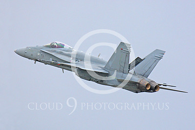 F-18FORG 00020 McDonnell Douglas F-18 Hornet Finnish Air Force HN-432 by Peter J Mancus