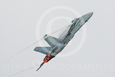 F-18Forg 00044 McDonnell Douglas F-18A Hornet Finnish Air Force by Peter J Mancus