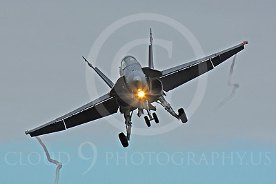 F-18Forg 00098 McDonnell Douglas F-18 Hornet Finnish Air Force by Peter J Mancus
