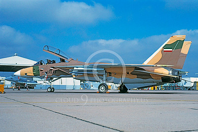 F-14Forg 00003 Grumman F-14 Tomcat Imperial Iranian Air Force NAS Miramar 1990 by Michael Grove, Sr