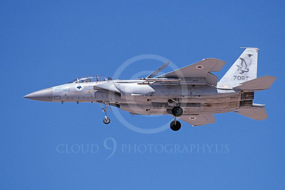 F-15Forg 00044 A landing two seat Israeli Air Force McDonnell Douglas F-15 Eagle jet fighter 706 9-2002, airplane picture, by Michael Grove, Sr