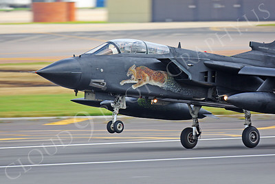 CUNMJ 00103 Panavia Tornado Italian Air Force by Peter J Mancus