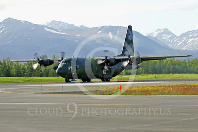 C-130Forg 00053 Lockheed C-130 Hercules South Korean Air Force by Paul Ridgway