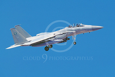 F-15Forg 00090 A landing two seat Royal Saudi Air Force McDonnell Douglas F-15 Eagle jet fighter 8-2007, airplane picture, by Michael Grove, Sr