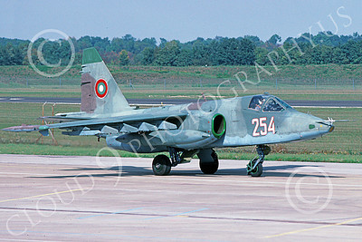 Su-25 00027 A taxing Sukhoi Su-25K Frogfoot Serbian Air Force 254 10-2002 military airplane picture by Hans Werner