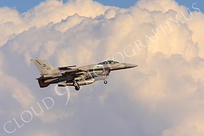 F-16E 00008 Lockheed Martin F-16E Desert Falcon United Arab Emirates Air Force UAEF 3031 Nellis AFB by Peter J Mancus